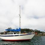 Red-Anchor-morrobay